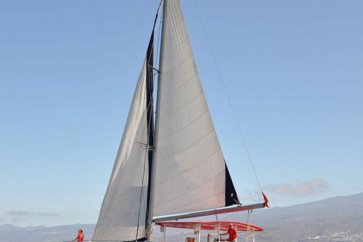 Tour di osservazione e ascolto delle balene a Tenerife - 911