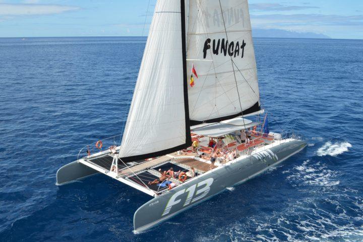 Catamaran tour in Tenerife naar Los Gigantes met Freebird - 787