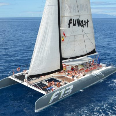 catamaran tour in Tenerife with Freebird - Excursion en barco en Tenerife para ver ballenas o delfines con Freebird