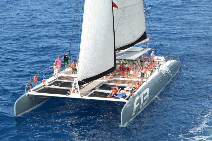 Catamaran tour in Tenerife naar Los Gigantes met Freebird - 788