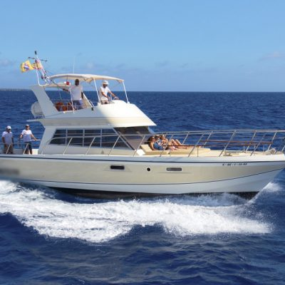 Neptuno Tenerife Private Boat Charter - Private Boat Charter in Tenerife for Groups