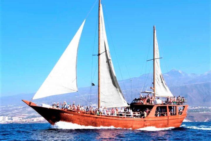Tenerife laevareis Los Gigantes'ile koos Shoguniga - 7271