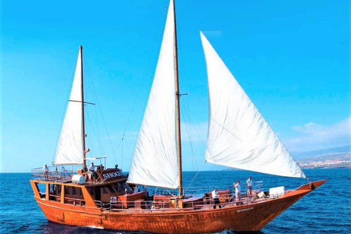 Tenerife laevareis Los Gigantes'ile koos Shoguniga - 7272