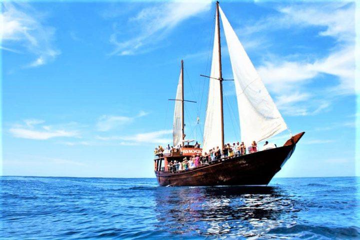 Tenerife laevareis Los Gigantes'ile koos Shoguniga - 7265