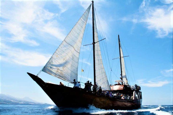 Tenerife laevareis Los Gigantes'ile koos Shoguniga - 7266