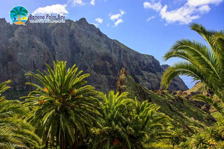 Teneryfa trekkingowy kanion Masca - 1041