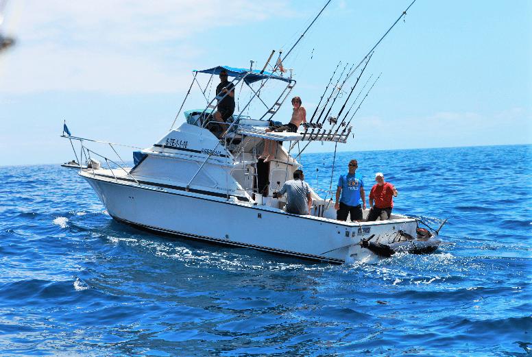 Sportvissen op Tenerife zonder grenzen