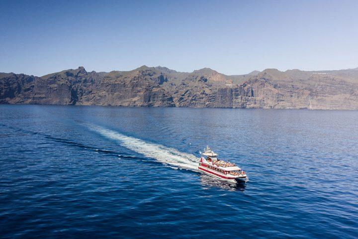 4,5-godzinna trasa katamaranem na Teneryfie z Royale Delfin do Los Gigantes - 1608