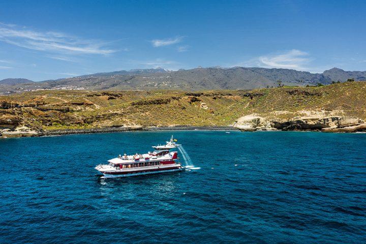 4,5-godzinna trasa katamaranem na Teneryfie z Royale Delfin do Los Gigantes - 1612