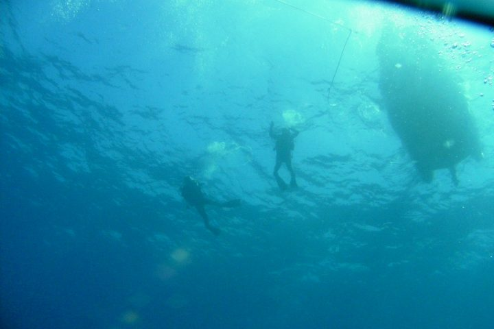 Open Water Diver Course in Tenerife - 1238