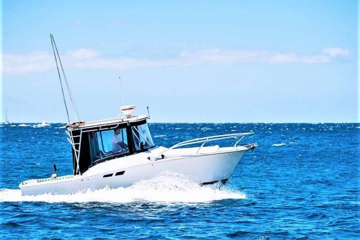 Teneriffa Fischen & Bootsverleih mit oder ohne Skipper in Las Galletas - 2395