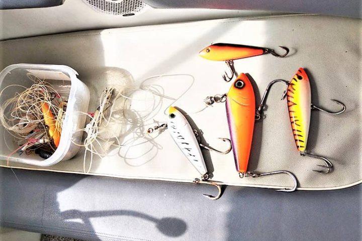 Teneriffa Fischen & Bootsverleih mit oder ohne Skipper in Las Galletas - 2384