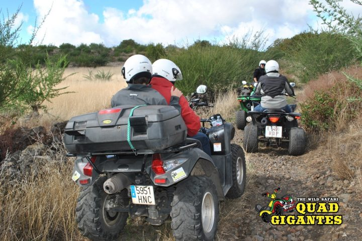 Tenerife Quad Bike Safari Vulcano - 1185