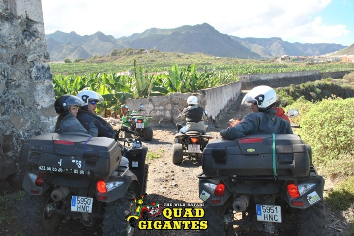 Tenerife Quad Bike Safari Vulcano - 1187