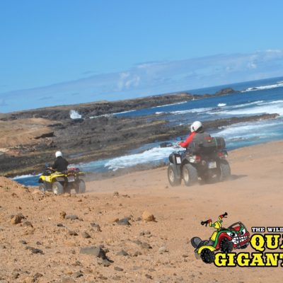 Tenerife Quad Bike Safari Vulocano (1) - Safaris en quads en Tenerife