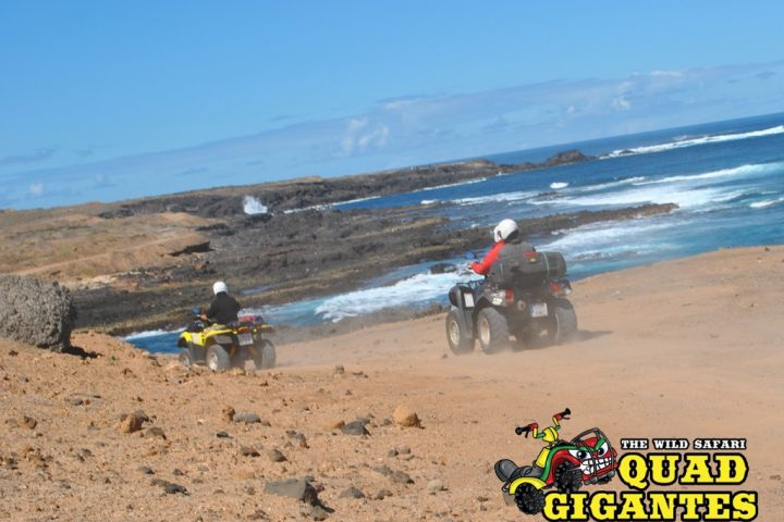 Tenerife Quad Bike Safari Vulcano - 1188