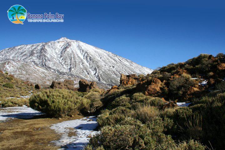 Tenerife: Holidays in Winter