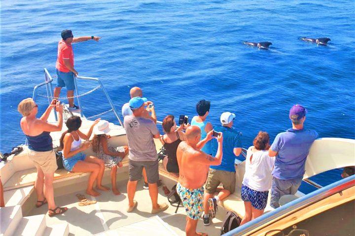 Privati valčių nuoma su kapitonu Los Cristianos Tenerifė - 7456