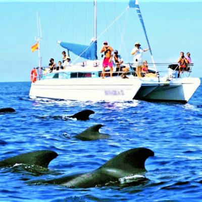 Bonadea Catamaran Charter in Tenerife - Private Catamaran Charter in Tenerife