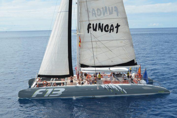 Katamaran-Tour auf Teneriffa mit Freebird - 777