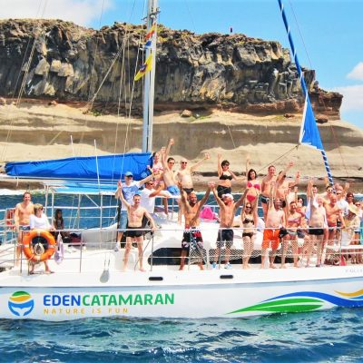 eden catamaran tour tenerife - 3h Whale Watching Touring em Tenerife com Catamarã do Éden