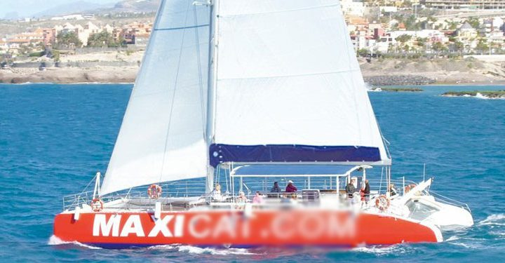Catamaran Tour in Tenerife South with MAXICAT - 811