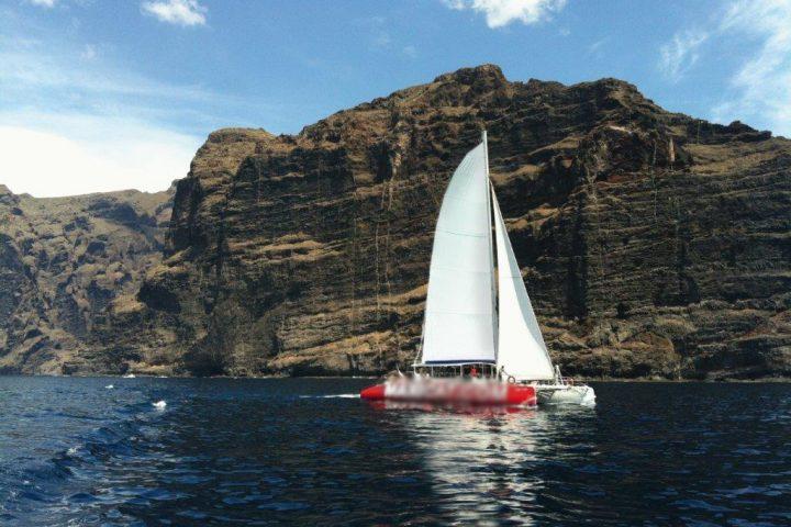 Catamaran Tour in Tenerife with Maxicat to visit Los Gigantes - 813