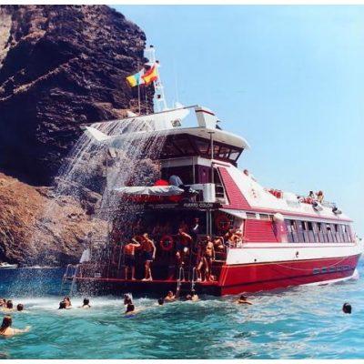 royal delfin tenerife los gigantes (59) - Escursioni in barca a Costa Adeje