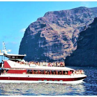 royal delfin tenerife los gigantes (59) - Bootsausflüge mit Transport von Puerto de la Cruz