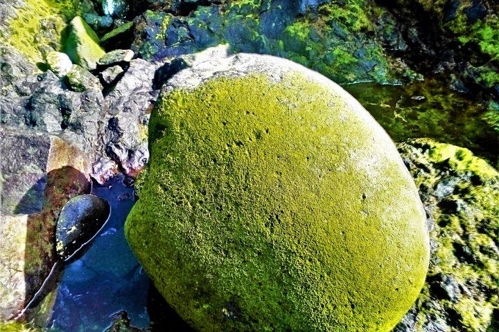Wycieczka po Teneryfie Teide – Masca - 960