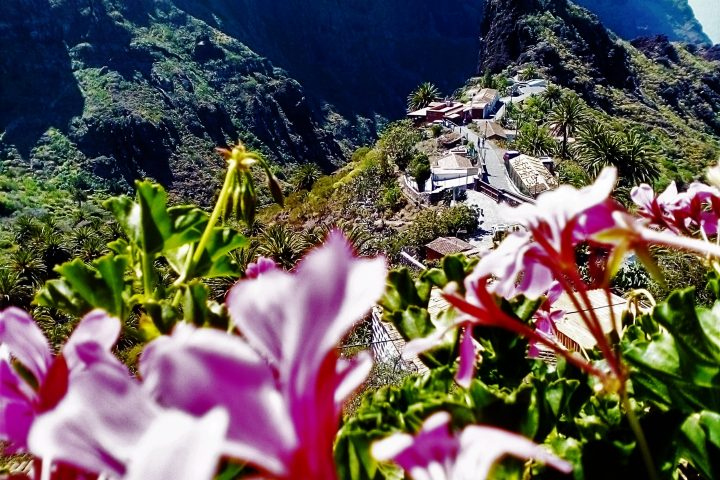 Tenerife Island Tour Teide – Masca - 954